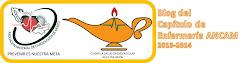 NANDA Red México apoya y participa con: