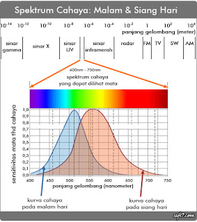 Ini alasan kenapa lampu-lampu kendaraan harus sesuai warna ...