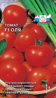помидоры томат Оля