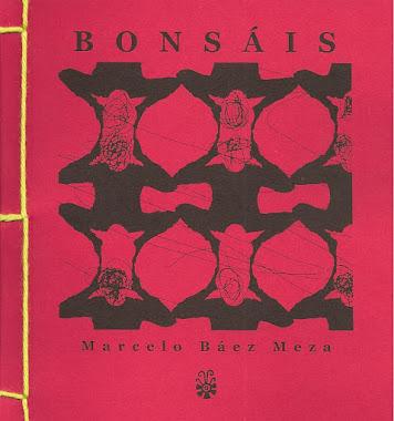 """""""bonsáis"""" - cuentos"""