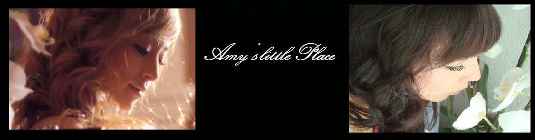 Amy's little place