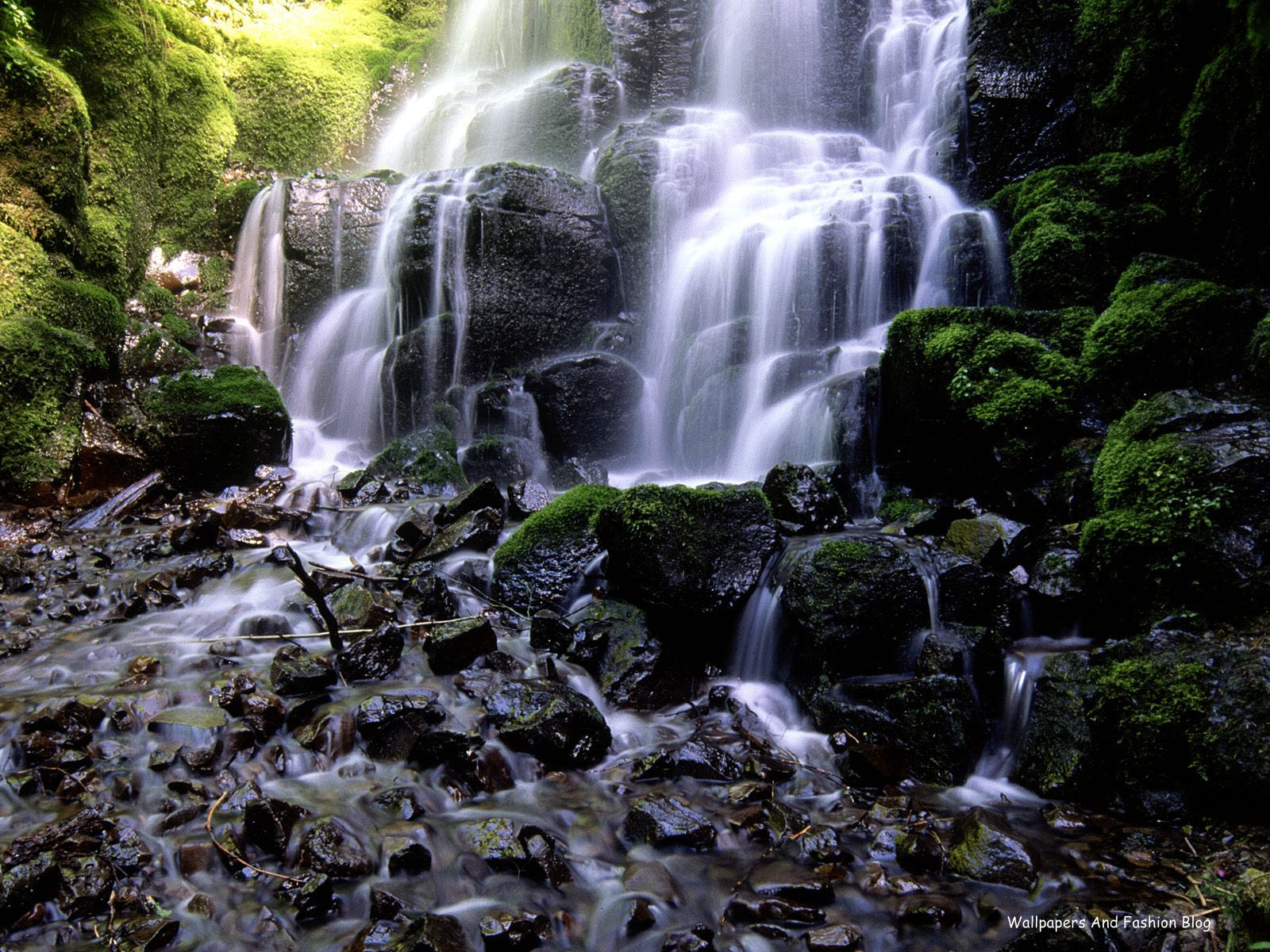 http://1.bp.blogspot.com/-8wcKz2sxKCc/TyBRWlitNfI/AAAAAAAADwc/xtZmmiFDdlU/s1600/Landscape_HD_Nature_Wallpapers_For_desktop_and_mobile+%252815%2529.jpg