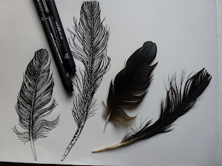 black ink feathers