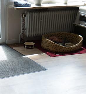 family bakery more vileda hot spray 100 c produkttest. Black Bedroom Furniture Sets. Home Design Ideas