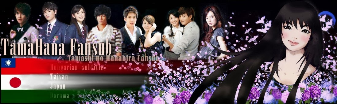 TnH fansub