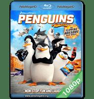 LOS PINGÜINOS DE MADAGASCAR (2014) FULL 1080P HD MKV ESPAÑOL LATINO