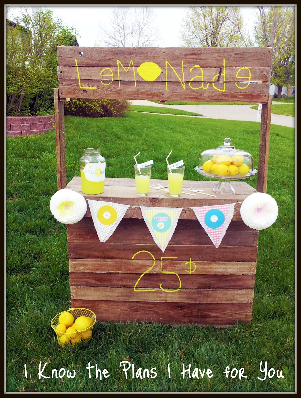 I know the plans i have for you round 3 pallet lemonade for Build a lemonade stand