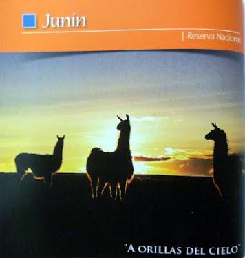 Reserva Nacional Junín.