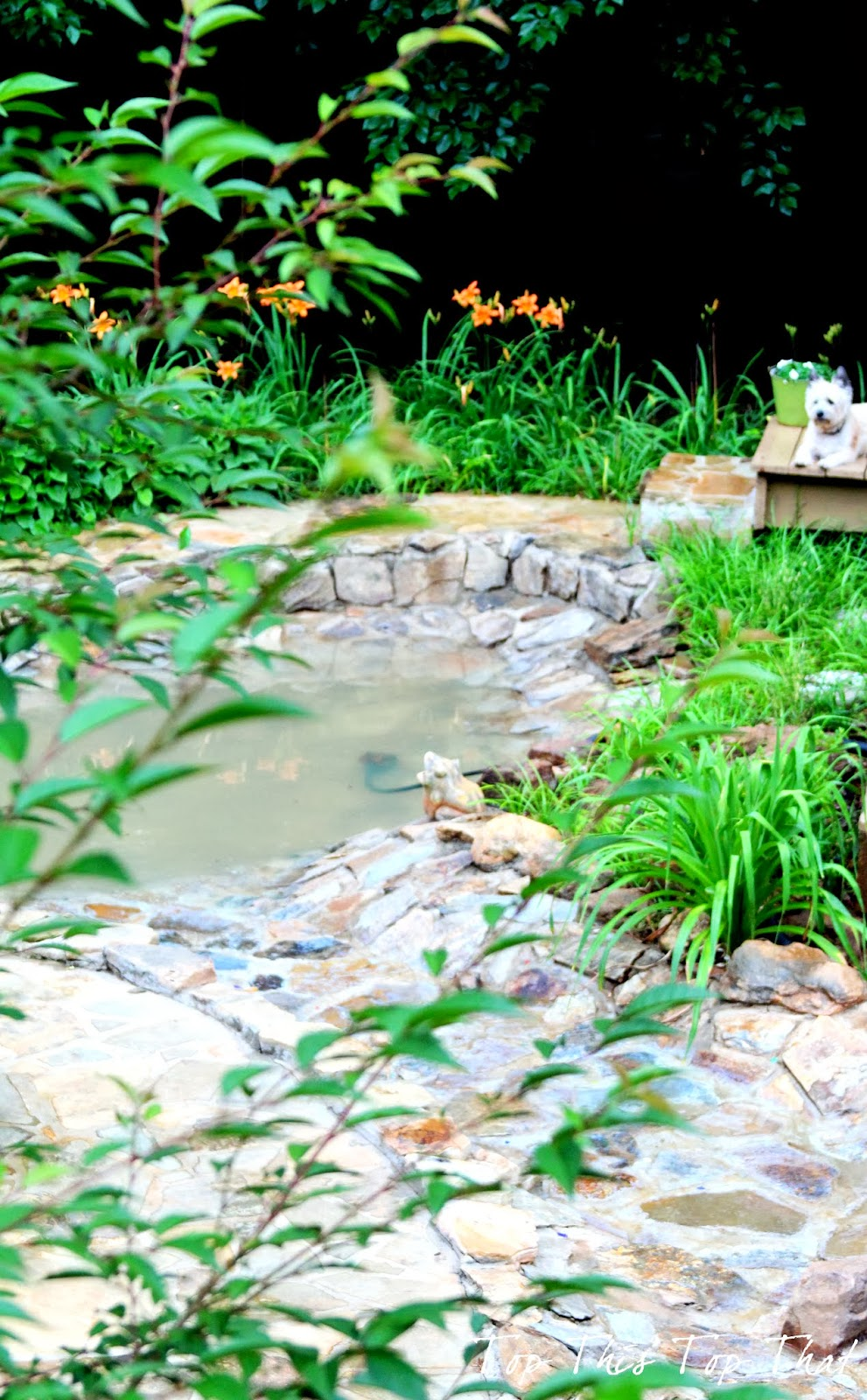 our proudest outdoor moment and our diy water feature duke manor