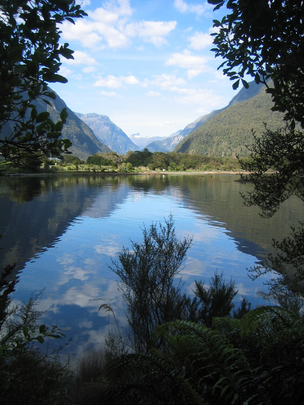 New Zealand Milford Sound, framing