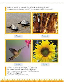 Apoyo Primaria Exploración de la Naturaleza y la Sociedad 1er grado Bloque 2 lección 2 Cambios en la naturaleza del lugar donde vivo
