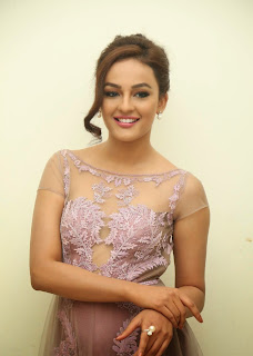 Actress Seerat Kapoor Pictures in Long Dress at Tiger Audio Launch  1
