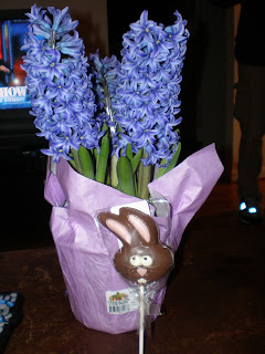 The chocolate bunny is terrified of the hyacinth.  I can't explain it either.
