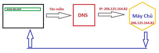 Dịch vụ phân giải tên miền - DNS
