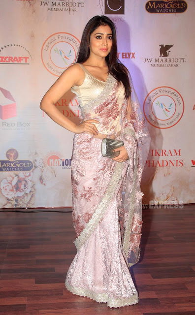 Shriya Saran in Vikram Phadnis Net Saree