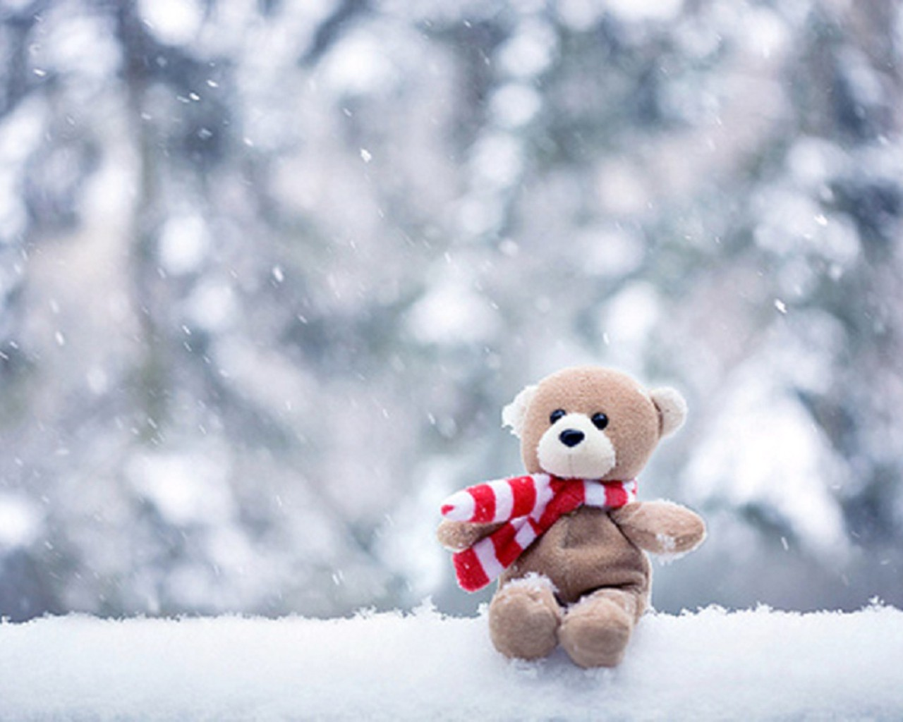 teddy bear on snow fall wallpaper - latest hd wallpaper