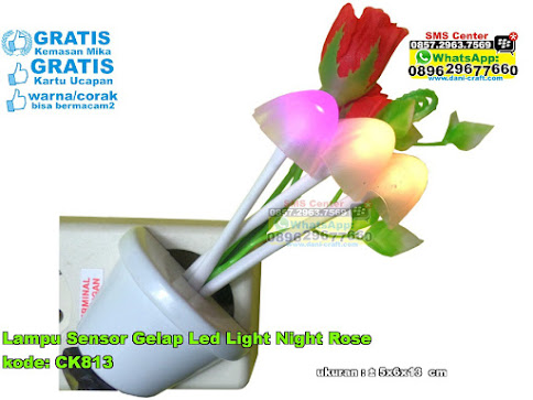 Lampu Sensor Gelap Led Light Night Rose