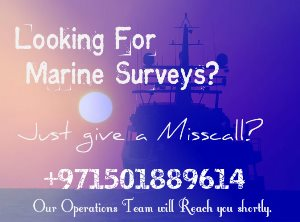 Ad: Marine Surveyor