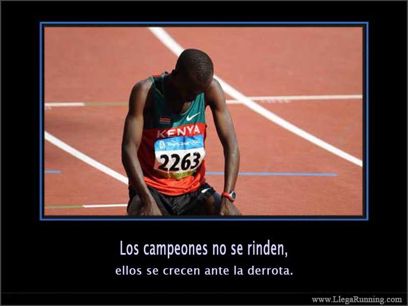 Imagenes Y Frases De Motivacion