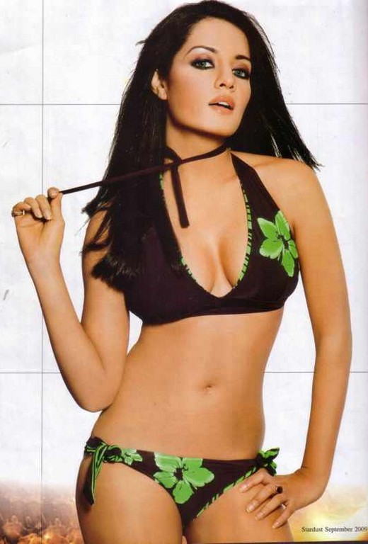 celina jaitley bollywood actress bikini