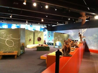 Photo of Kids Space at Australian Museum