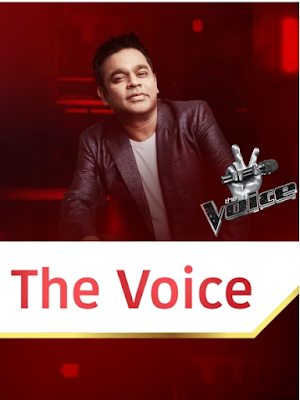 The Voice S01 2019 Episode 04 720p WEBRip 300Mb x264