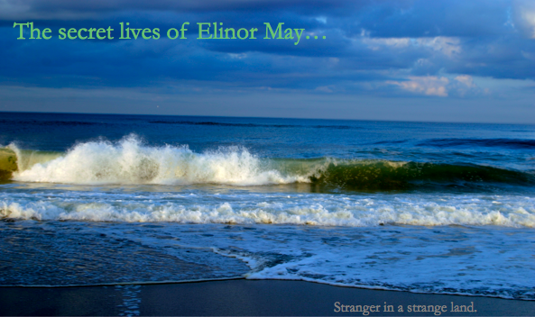 the secret lives of elinor may