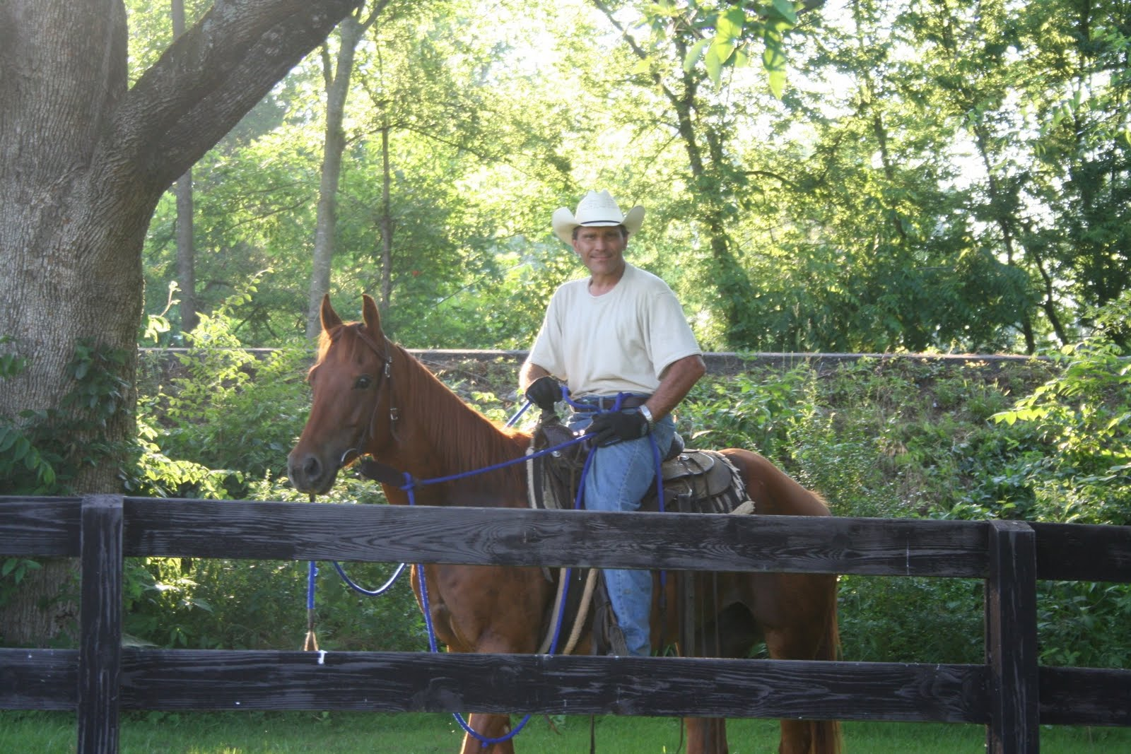 Image of Kevin Spaeth Horse Training Sitting on trained horse near fence under trees on a sunny day.