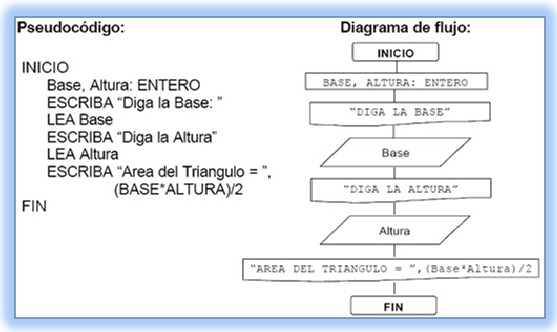 Algoritmos algoritmos diagramas de flujos pseudocdigos y el algoritmo que permita conocer el rea de un tringulo a partir de la base y la altura ccuart Gallery