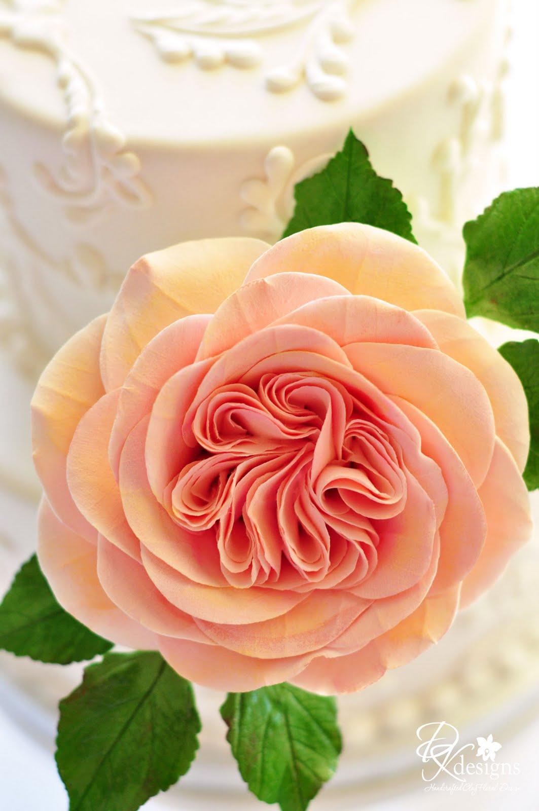 david austin inspired rose cake flowers dk designs. Black Bedroom Furniture Sets. Home Design Ideas