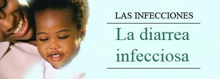Shigellosis, salmonellosis intestinal, cólera y diarrea del viajero
