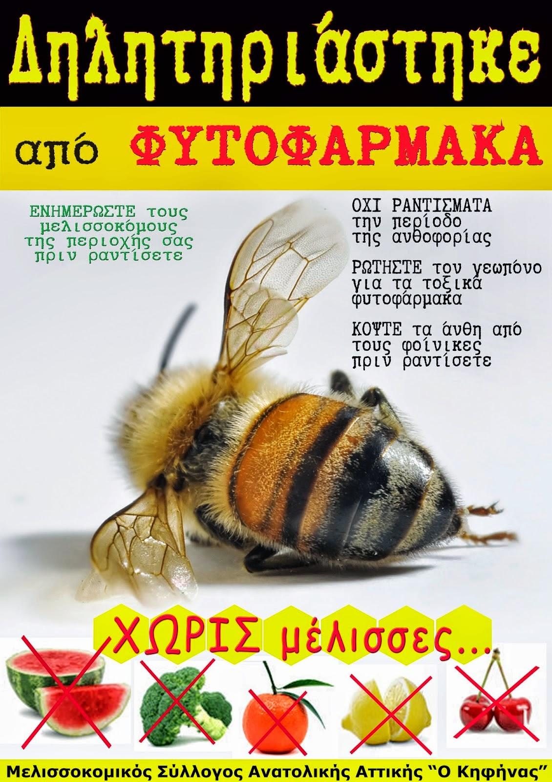 Μέλισσα και φυτοφάρμακα