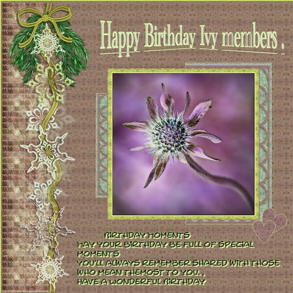 Happy birthday Ivy members
