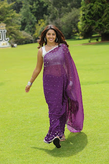 Richa Gangopadhyay Latest  Pictures in Saree  0015.jpg