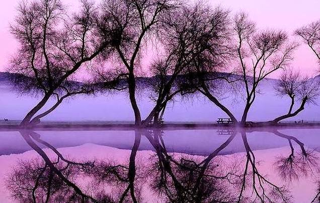 cermin alam cermin diri