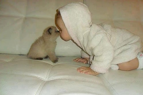 Height of cuteness