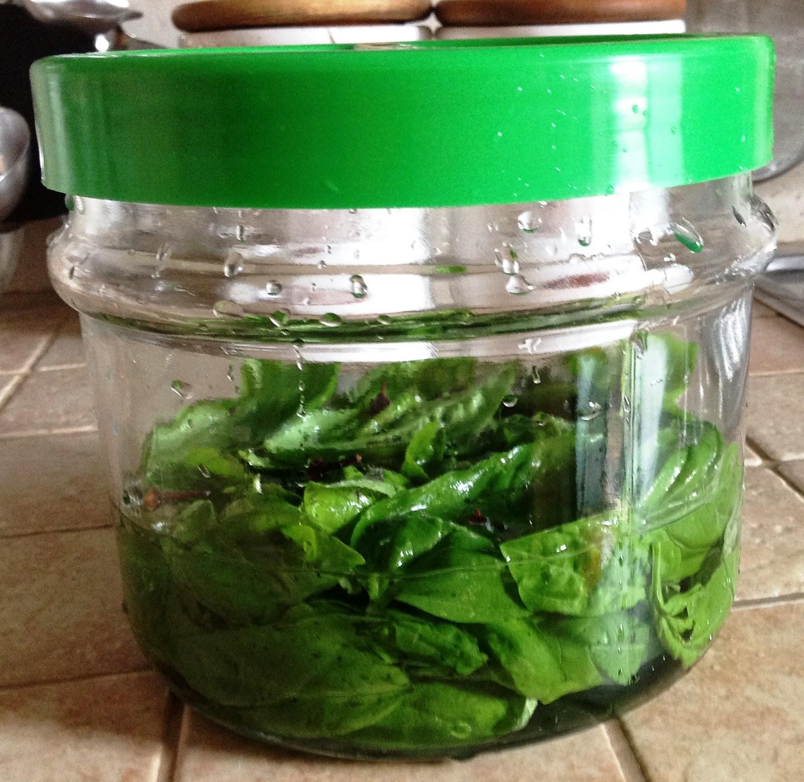 Mangiaconrosa liquore di basilico for Basilico vaso