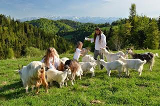 Wiosna jak Lato, magiczne Gorce i Tatry w tle , Agroturystyka Małopolska i sposób na szczęśliwe życie – Górna Chata