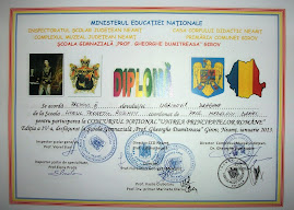 Premiul al III-lea - Dragana Ugrinovič (clasa a XI-a C)...