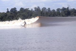 Tanjung Bono Surf tides