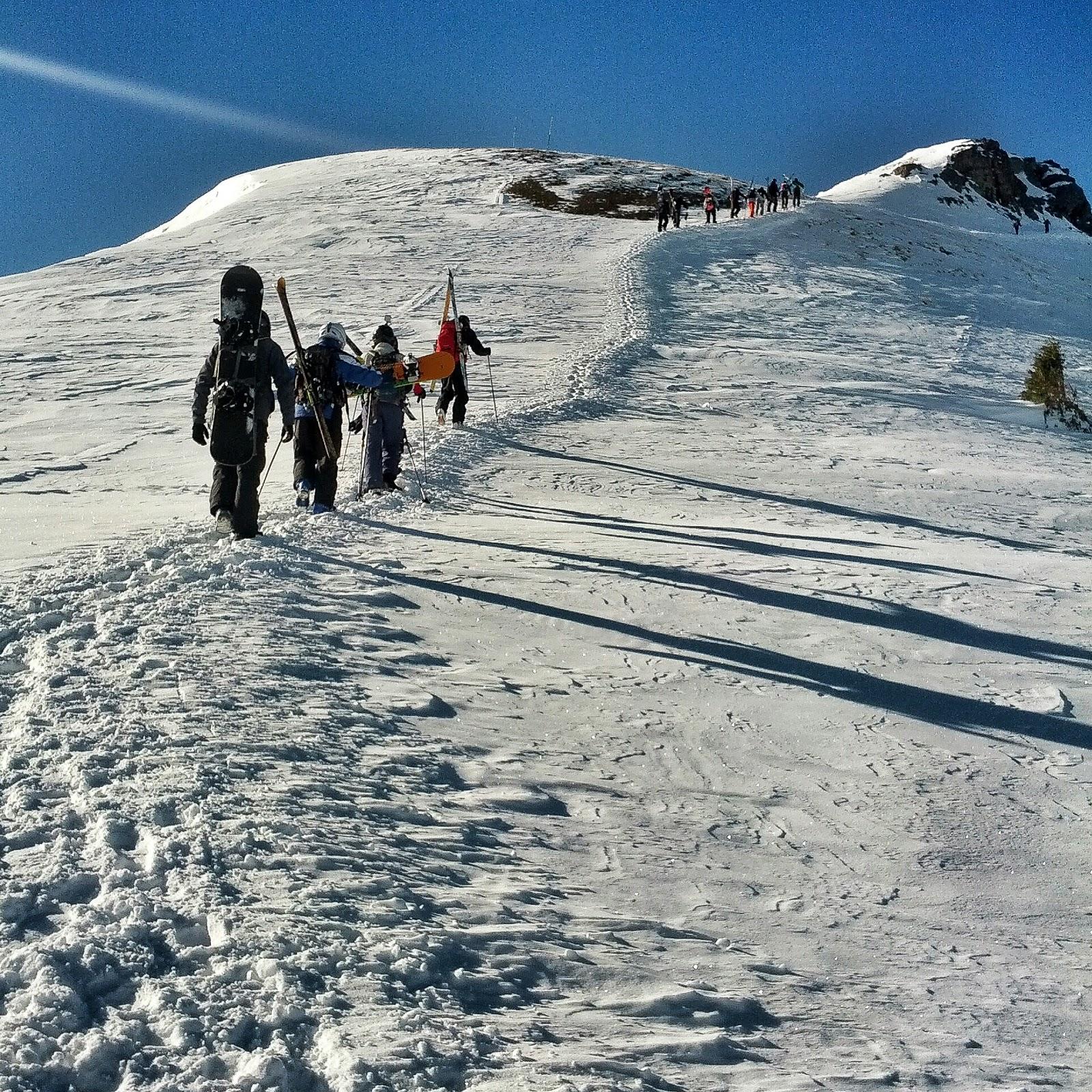Ski Silverton Viagra