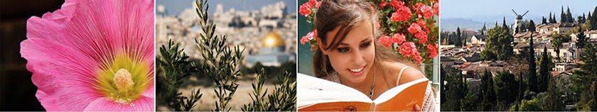 Study abroad in Jerusalem