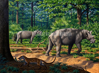 extinct animals Dinocerata Uintatherium