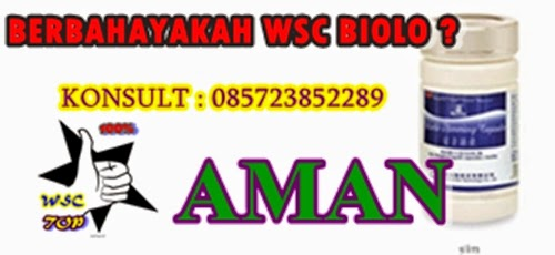 http://halaldietalami.blogspot.com/2014/08/pelangsing-wsc-biolo-halal-tidak.html