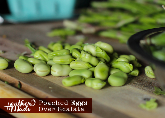 Poached Eggs Over Scafata. recipe. fava beans. aspargus, peas.