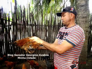 Blog Marcone Pedro visitou nesta segunda-feira Criadores de Galinha Caipira do Município de Senador