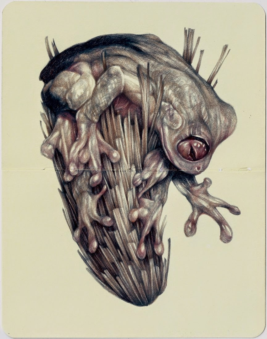 02-Marco-Mazzoni-Surreal-Animal-Drawings-www-designstack-co