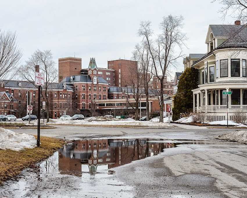 Portland, Maine March 2015 Western Promenade towards Maine Medical Center reflection in puddle. Photo by Corey Templeton.