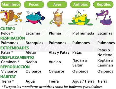 http://www.spanish.cl/ciencias-naturales/animales-vertebrados.htm