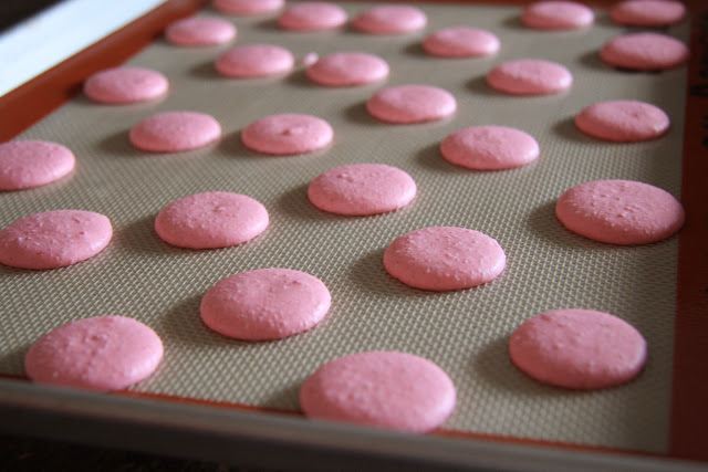 Macaron shells resting before being baked.